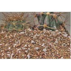 Универсален субстрат за кактуси 2 литра